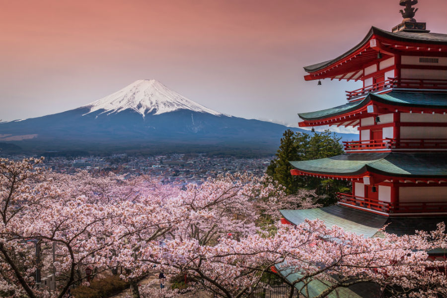 Japon NUBA