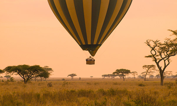 The best safaris in Tanzania
