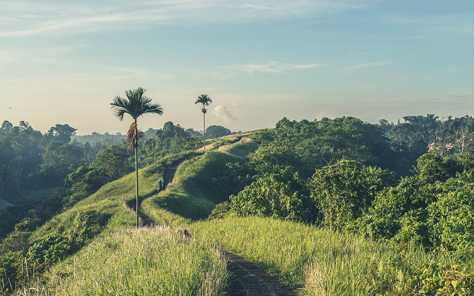 Trips for two. Enter the heart of Bali