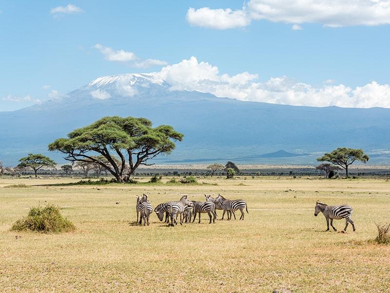 Kenya. Chyulu Hills Bicycle Safari