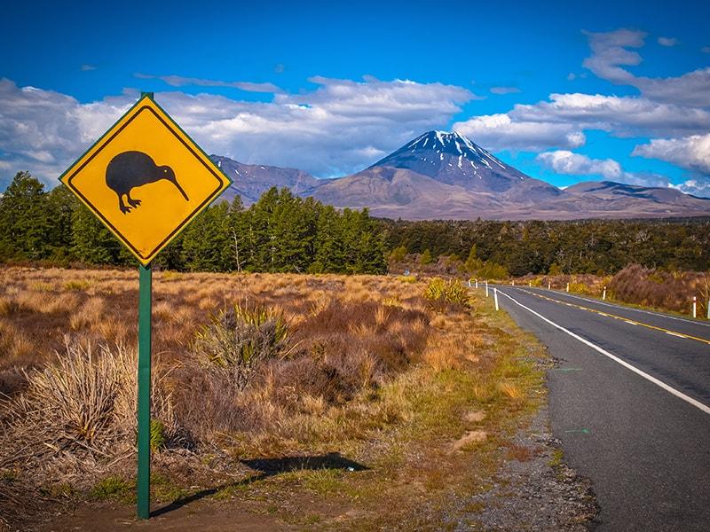 Nueva Zelanda. Pasar un día en Waiorua Bay