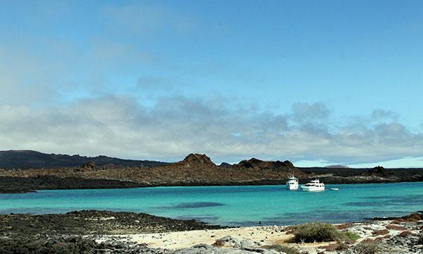 Galapagos Islands and Ecuador
