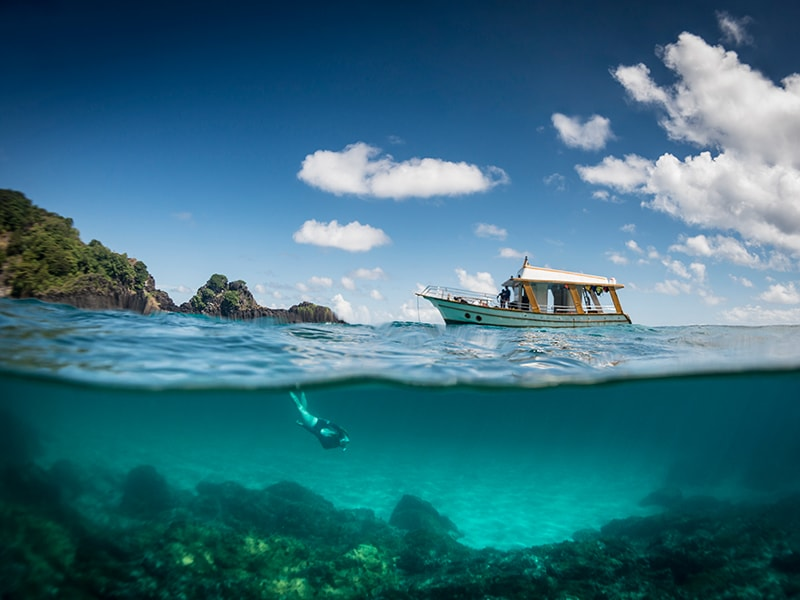 Brazil. Diving and snorkeling in three of the best beaches in the world
