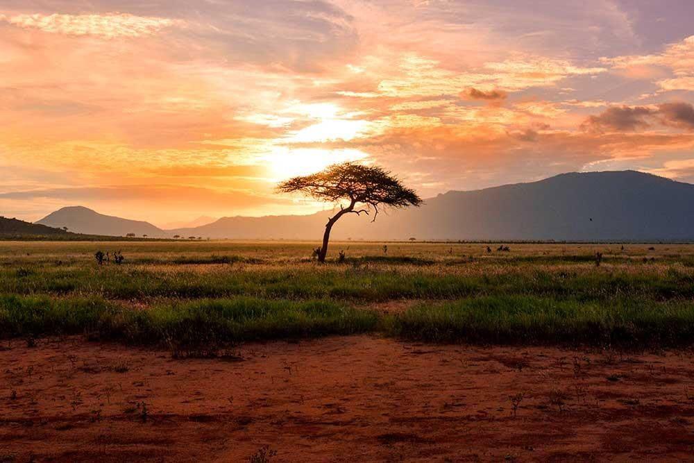 Un viaje CON SENTIDO a Kenia
