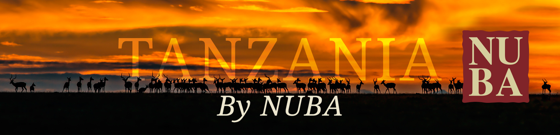 Cabecera Tanzania by NUBA