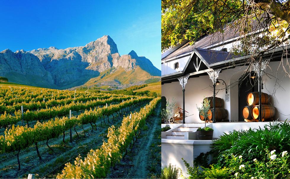 Bodega y viñedos en Franschhoek