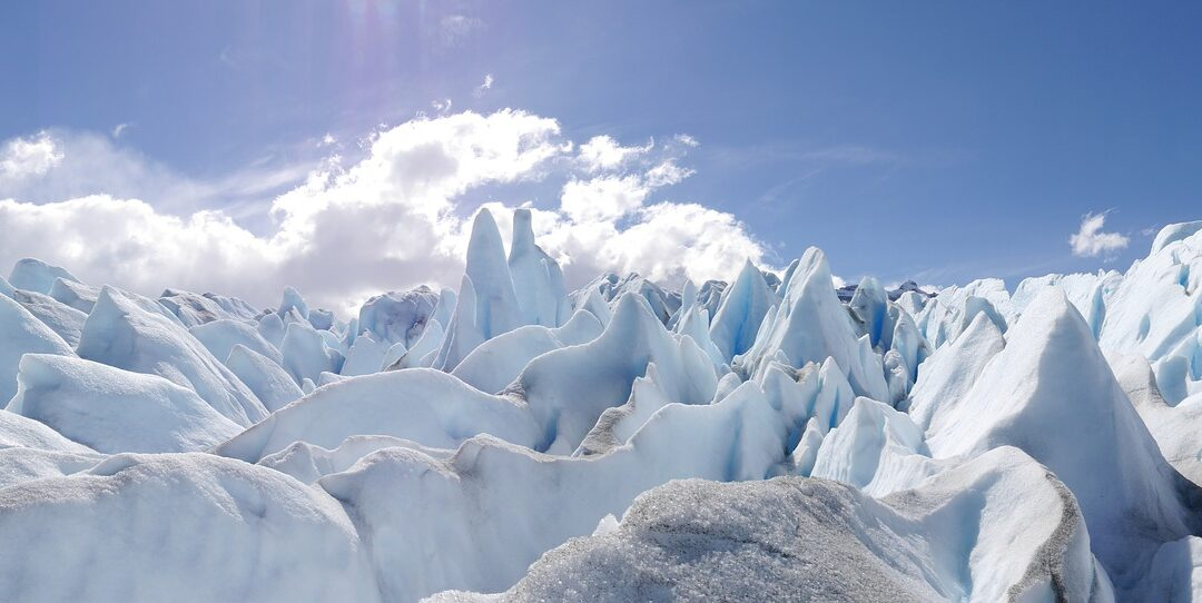 Patagonia: Sangre fría, corazón caliente.