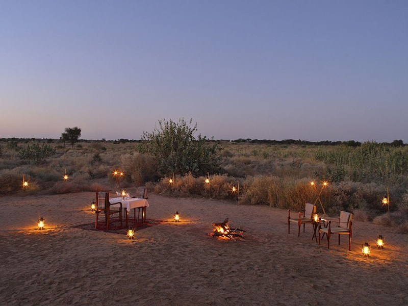 India. Special dinner in the middle of the Thar desert