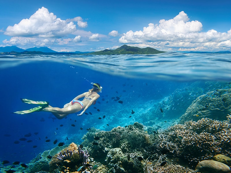 Indonesia. Diving in Sulawesi