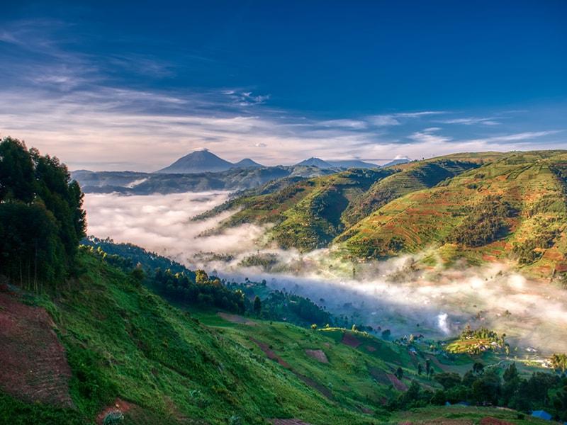 Rwanda/Uganda Hikes up Virunga, Muhavura, Mgahinga or Sabinyo volcanoes