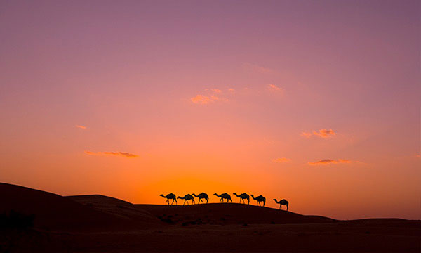 Descubre Omán