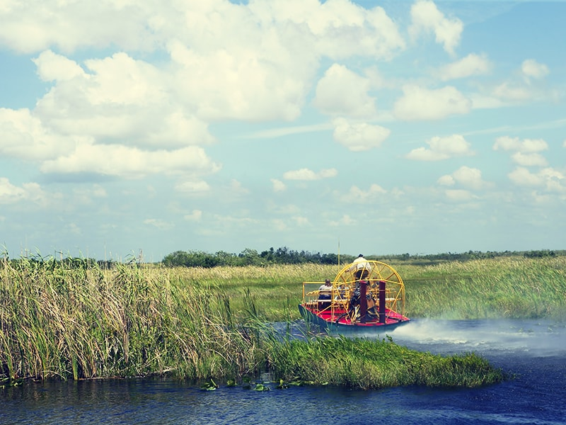 United States. Tour in 4-wheel drive vehicle and airboat