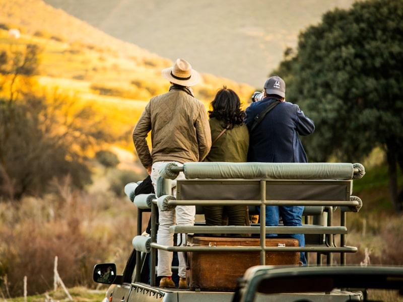 España. Disfruta de un safari ibérico privado en 4×4.